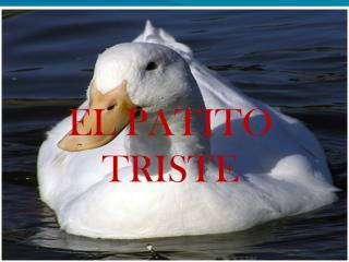 EL PATITO TRISTE