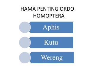 HAMA PENTING ORDO HOMOPTERA