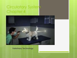 Circulatory System  Chapter 4