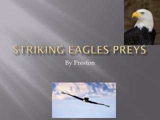 Striking eagles preys