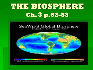THE BIOSPHERE Ch. 3 p.62-83