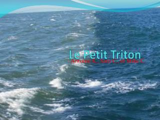 Le Petit Triton