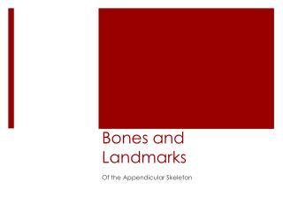 Bones and Landmarks