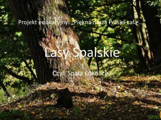 """Projekt edukacyjny :  """"Piękna  nasza Polska cała …"""" Lasy Spalskie"""