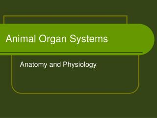 Animal Organ Systems
