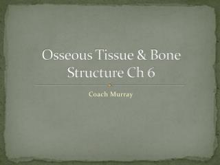 Osseous Tissue & Bone Structure Ch 6