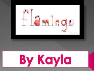 By Kayla