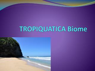 TROPIQUATICA Biome