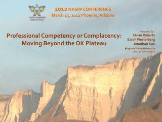 Professional Competency or Complacency:  Moving Beyond the OK Plateau
