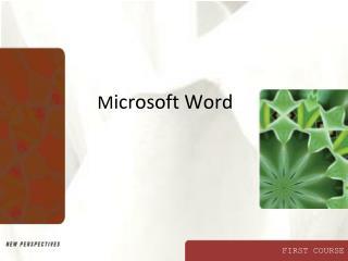 M icrosoft Word