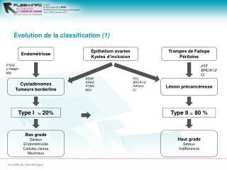 �volution de la classification  (1)