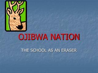 OJIBWA NATION