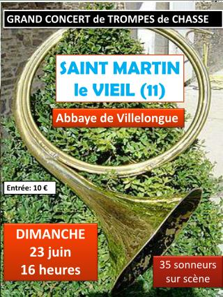 SAINT MARTIN LE VIEIL (11)