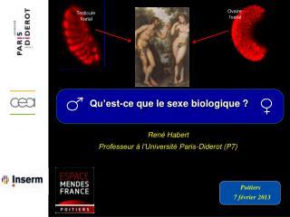 René Habert Professeur à l'Université Paris-Diderot (P7)