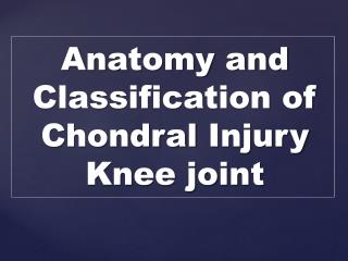 Anatomy and Classification  of  Chondral  Injury   K nee joint