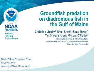Groundfish predation on diadromous fish in the Gulf of Maine