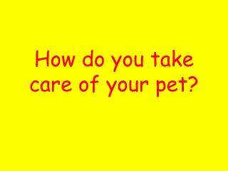 How do you take care of your pet?
