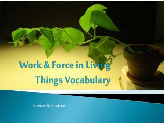 Work & Force in Living Things Vocabulary