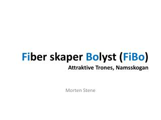 Fi ber skaper  Bo lyst ( FiBo ) Attraktive Trones, Namsskogan