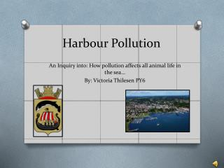 Harbour Pollution