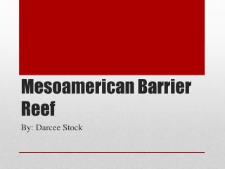 Mesoamerican Barrier  R eef