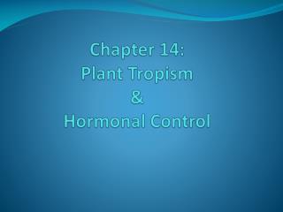 Chapter 14:  Plant Tropism  &  Hormonal Control