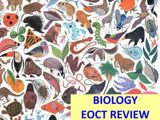 BIOLOGY EOCT REVIEW
