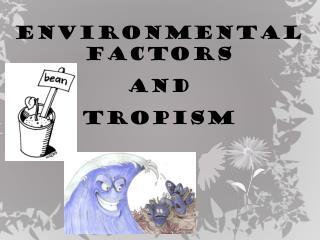 Environmental factors  and  TROPISM