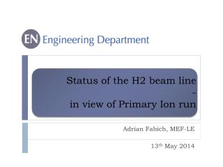Status of the H2 beam line -  in view of Primary Ion run