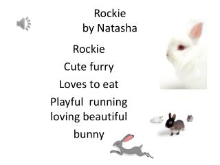 Rockie by  Natasha