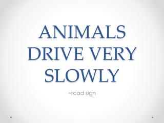 ANIMALS DRIVE VERY SLOWLY
