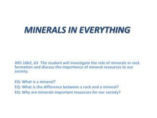 MINERALS IN EVERYTHING
