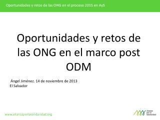 Oportunidades y retos de las ONG en el proceso 2015 en  AyS