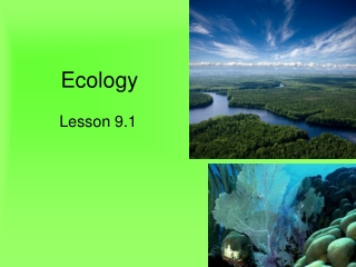 Biotic and Abiotic Factors