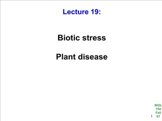 Biotic stress Plant disease
