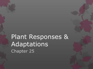 Plant Responses & Adaptations