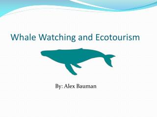 Whale Watching and Ecotourism