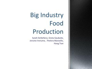 Big Industry Food Production