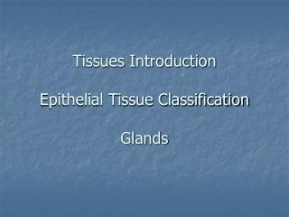 Tissues Introduction Epithelial Tissue Classification Glands