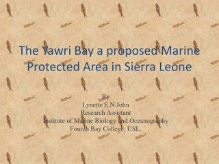 The Yawri Bay a proposed Marine Protected Area in Sierra Leone