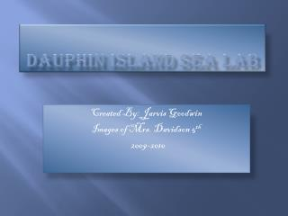 Dauphin island sea lab