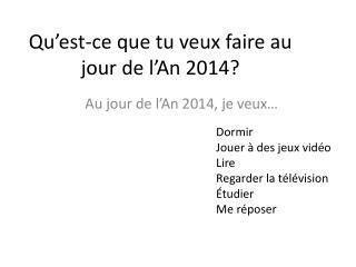 Qu'est-ce que tu veux  faire au jour de  l'An  2014?