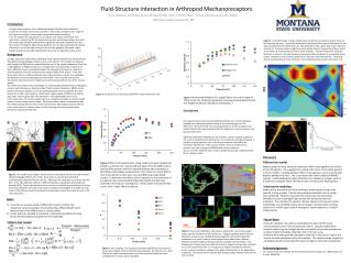Fluid-Structure Interaction in Arthropod Mechanoreceptors