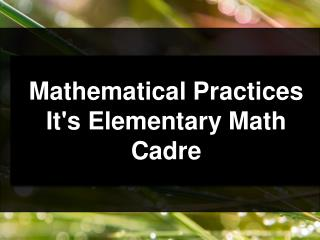 Mathematical Practices It's Elementary Math  Cadre