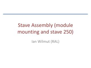 Stave Assembly (module mounting and stave 250)