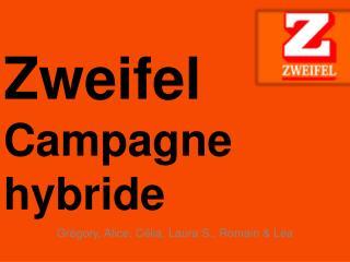Zweifel Campagne hybride