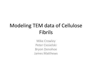 Modeling TEM data of Cellulose Fibrils