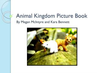 Animal Kingdom Picture Book