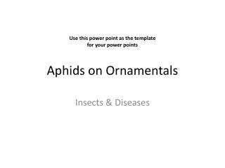 Aphids on Ornamentals