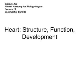 Biology 323 Human Anatomy for Biology Majors Lecture 10 Dr. Stuart S. Sumida